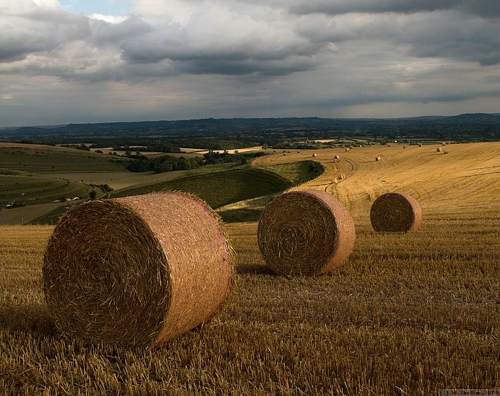 'AFTER HOURS' Straw bales, Mere